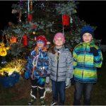 Rozsvícení vánočního stromečku Úherce