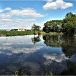 Vypuštění a odbahnění Malého rybníka 2020